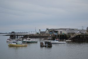 Stinson cannery2